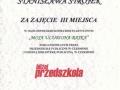 nasze_sucesy60